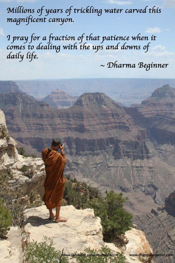 Canyon monk