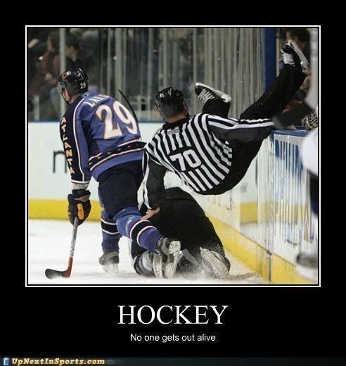 Pin By Diego Picard On Sports In 2020 Sport Hockey Funny Hockey Memes Hockey Humor