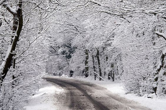 We hear that Snow is on its way #snow
