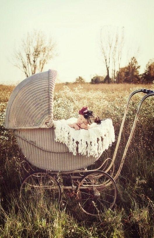 Antique Wicker Carriage   Newborn Photography