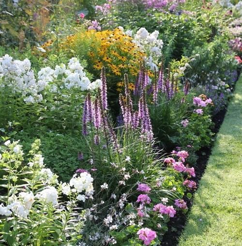 Gardens Garden Borders And Colorful Flowers On Pinterest