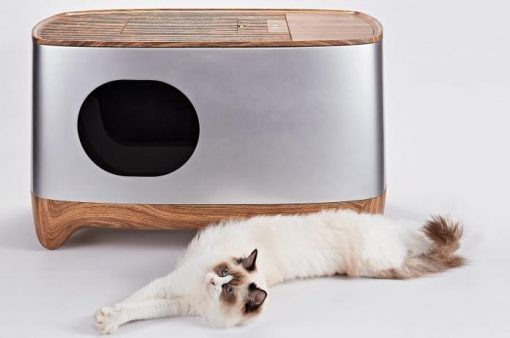 Auto Pack Self Cleaning Litter Box In 2020 Self Cleaning Litter Box Litter Box Cleaning Litter Box