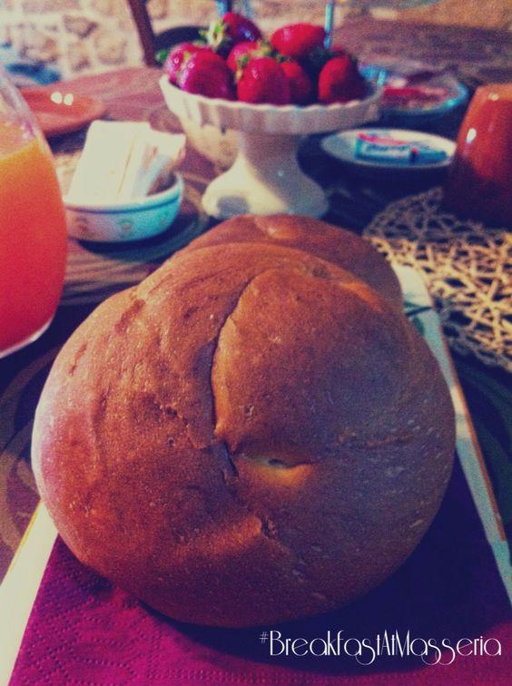 Pagnottini di #Agnone a colazione *** a traditional sponge cake from Agnone #destinazionemolise #food #instafood #italy #moliseintavola