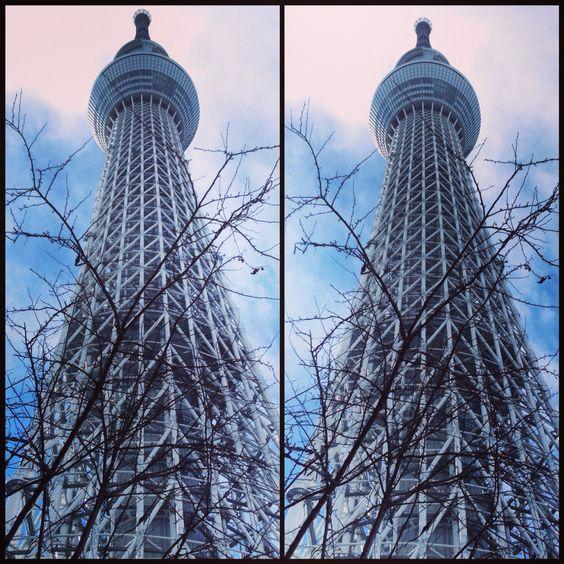 冬のスカイツリー  Winter Skytree  写真は聳えるスカイツリーを3Dでどうぞ。寄り目で見てくださいね  Enjoy 3D stereogram of towering Skytree with cross-eye.  #東京スカイツリー #3D #stereogram #crosseyed #Skytree #cloud #sky #tree