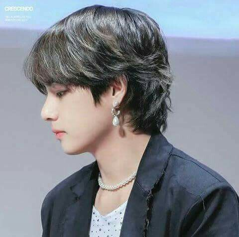 Taehyung Mullet Hair Mullet Hairstyle Hairstyle Short Hair Styles