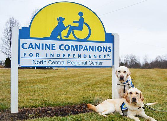Cci Org North Central Training Center Provide Free Service Dog S