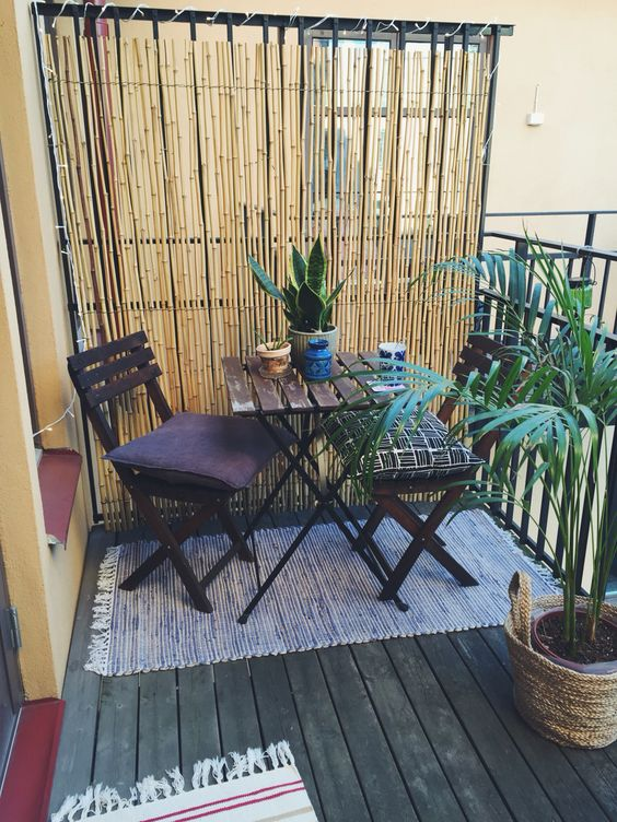 Privacy screens screens and balcony ideas on pinterest for Plants for small apartment balcony