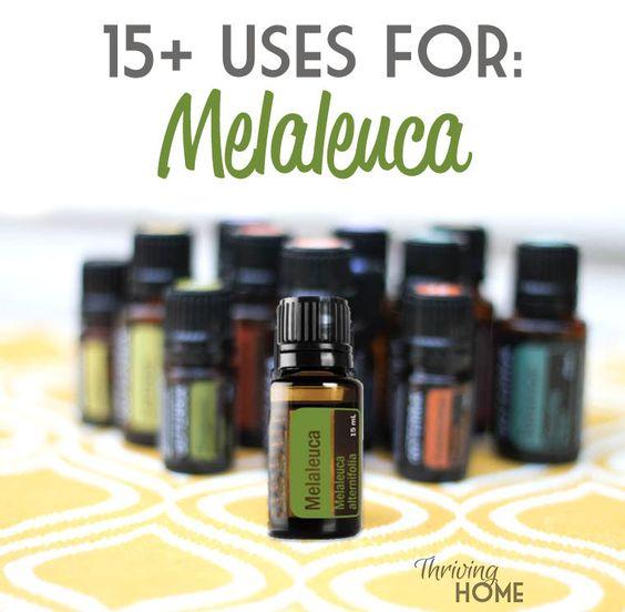 15 Uses For Melaleuca All Natural Baby Pinterest