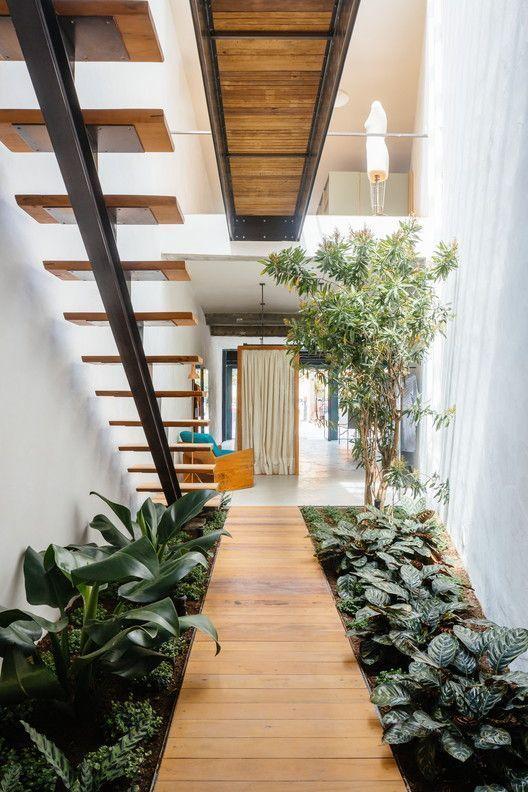indoor pathway with plants #gardenIdeas #garden #gardening #plants #homeDecor #indoor