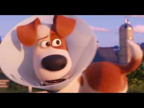The Secret Life Of Pets 2 Trailer 2019 Rooster Trailers Secret Life Of Pets Movieclips Trailers Secret Life