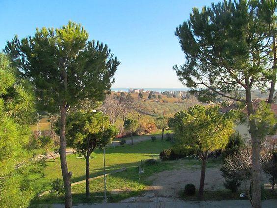 http://www.immobiliarepineto.it/appartamenti-quadrilocali-4-locali-/quartiere-dei-fiori-quadrilocale-con-garage-e-cantina.html