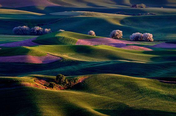 Salida del sol en las colinas de Palouse (EEUU)