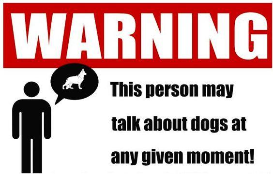 dog talker