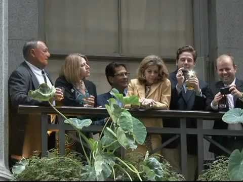 """Wall Street Mocks Protesters By Drinking Champagne 2011  """"US Day of Rage""""    Demonstrations began on September 17 to show U.S. citizens anger over a financial system that favors the rich over all other American citizens. Chanting, """"We are 99 percent,"""" thousands of protesters gathered near Zucotti Park, close to Wall Street and began their march. Around 5 pm, while attempting to enter the financial district at 55 Wall Street, they were met by curious onlookers from the balconies who were…"""
