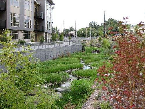 Meandering management/stormwater channel