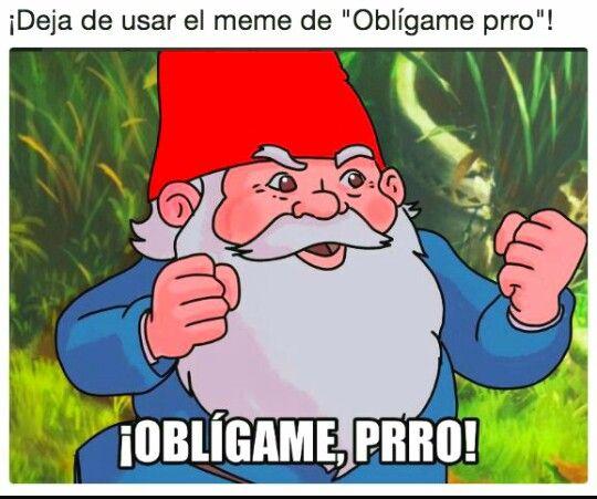 Obligame Prro V Memes Memes Divertidos Memes Chistosisimos