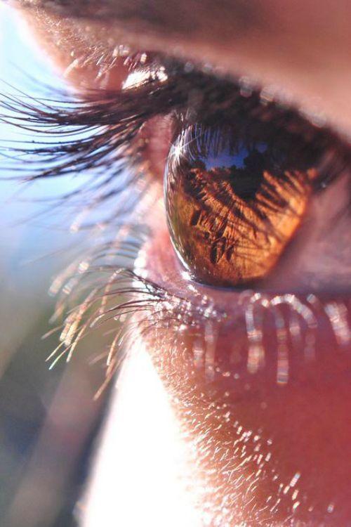 el reflejo de sus ojos !