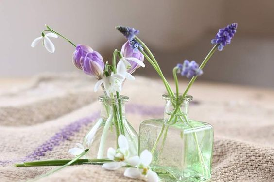 Early spring delicates. Muscari, pale purple crocus & snowdrops simply displayed in ink bottles
