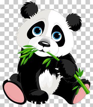 Ilustraciones De Panda Gigante Panda Rojo Panda Dibujos Animados Lindo Panda Ilustracion De Dibujos Animados P Cute Panda Cartoon Cartoon Panda Panda Drawing
