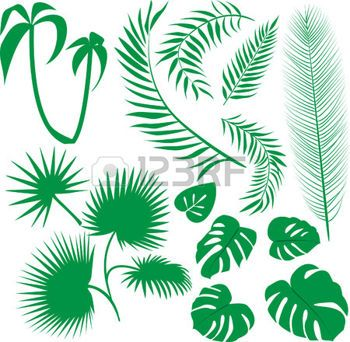 Feuille de palmier set de feuilles vertes motifs - Set de table feuille de palmier ...