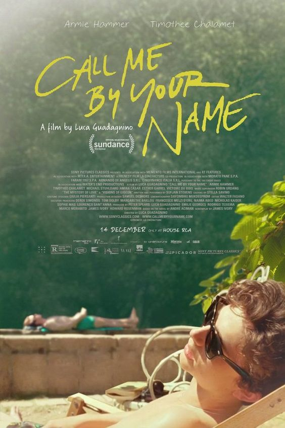 Call Me By Your Name Movie Poster - Luca Guadagnino Film - With Armie Hammer Timothée Chalamet - Art