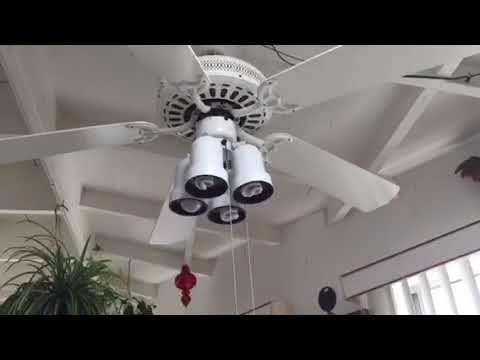 36 Regency Cabana Ceiling Fan Music Edition Youtube Ceiling Fan Fan Grandmas House
