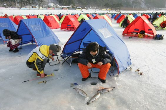 The Pyeongchang Trout Festival takes place during winter in the town of Jinbu-myeon in Pyeongchang-gun district. Visitors to the festival can enjoy a variety of programs. There will also be traditional folk games and visitors can try out sports. Any trout caught from ice fishing and lure fishing can be prepared right away at a nearby restaurant.