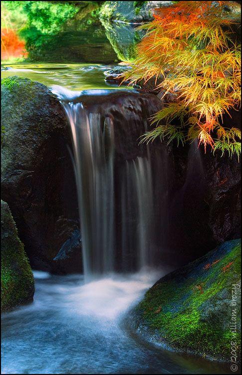 inspiring japanese garden awards media modern zen | 17 Best images about Waterfall Fury | Gardens, Water me ...