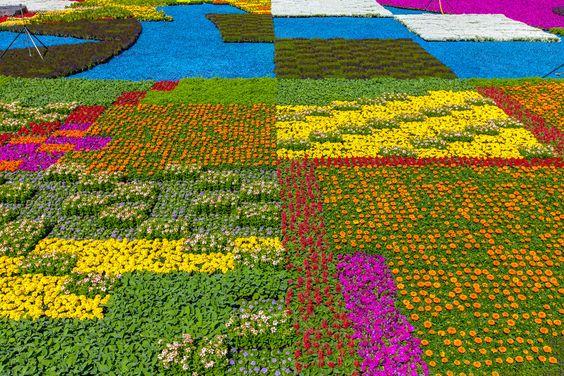 Geometría floral policromada en Amberes.   Matemolivares