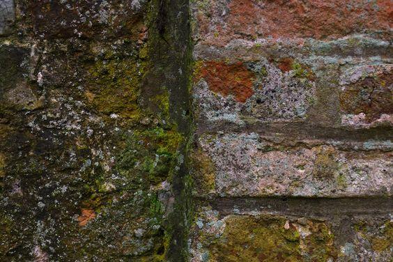 Close-up in Brugge