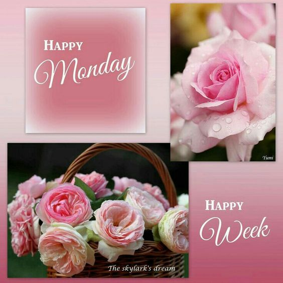 Happy Monday! God bless you and have a happy week!