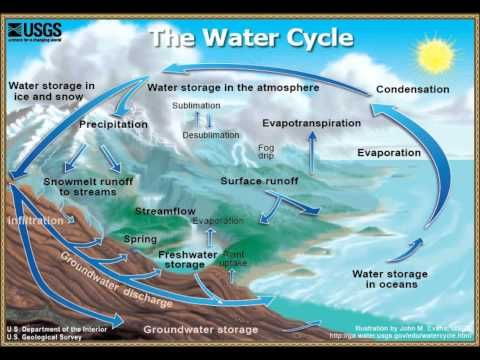 the water cycle speech The water cycle is the process by which clouds are formed by the sun evaporating the seawater, rain is produced by the clouds and the water returns to the ocean how does it work let's see if you know.