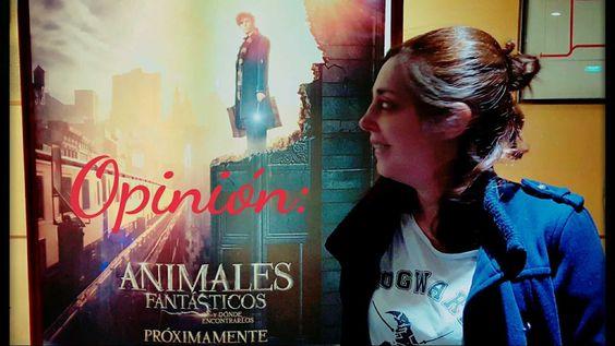 Por fin pude ir a ver Animales Fantásticos y dónde encontrarlos. En este vídeo doy mi opinión sobre la película.