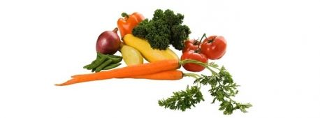 All about Vegan Nutrition