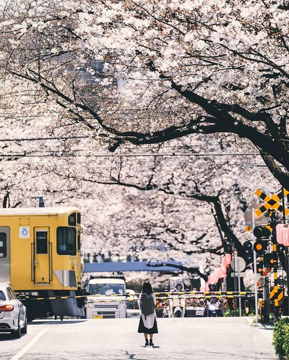 "Takahiro.MinamiさんはInstagramを利用しています:「. . . Tokyo/JPN ""portrait"" . . . 仕事前に撮りに行ってよかった。 . . . . . . #indy_photolife #indies_gram . . . .…」"