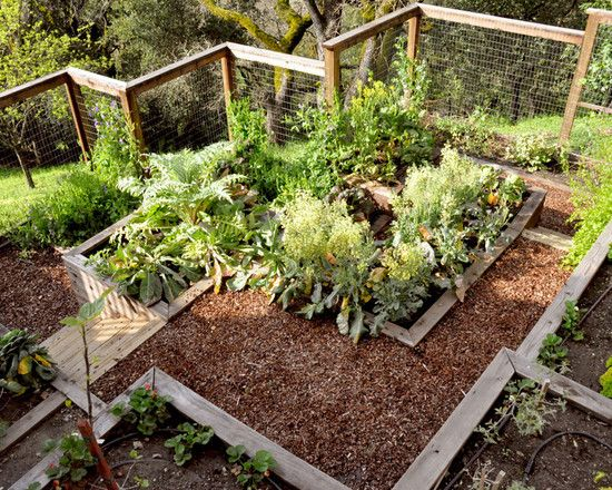 simple vegetable garden fencing ideas traditional landscape multi level garden boxes with steps and wildlife fencing ruibbscom exterior designs - Simple Kitchen Garden