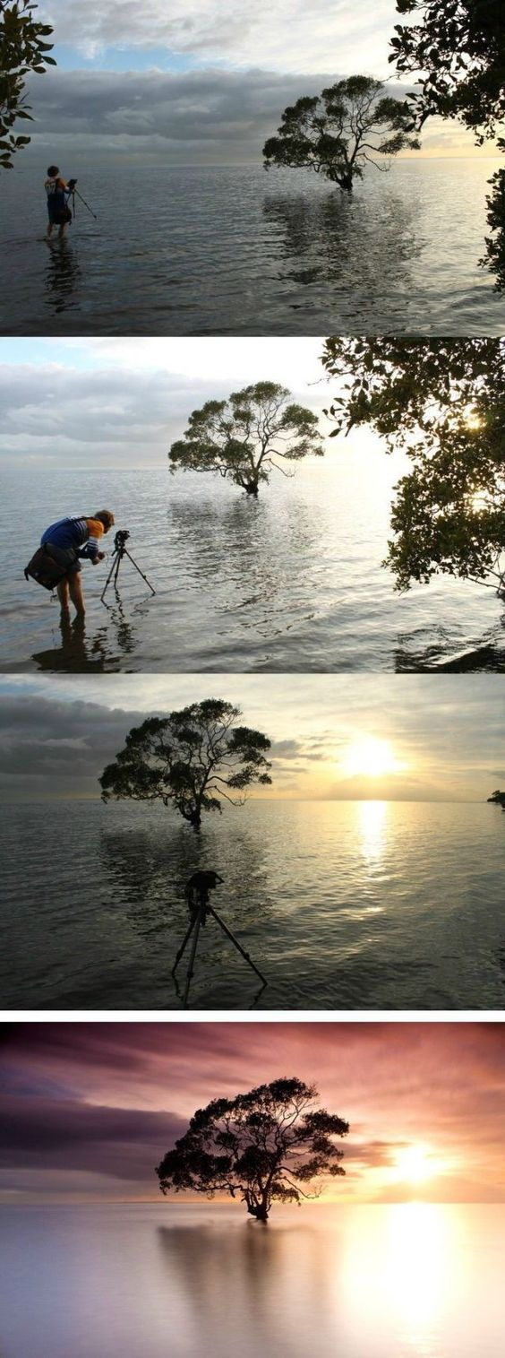 Great photographs take patience and dedication