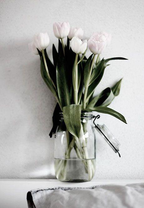come-far-durare-di-piu-i-fiori-recisi