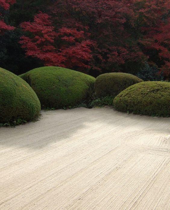 Zen garden...: