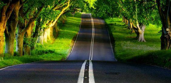 BrasilbyBus - Site de venda de passagens de ônibus! para quem ama estrada.