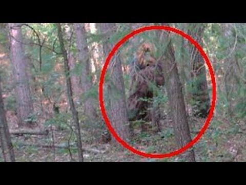 Bigfoot Portals In Southern Oregon Caught On..... Audio? | The Fortean Slip