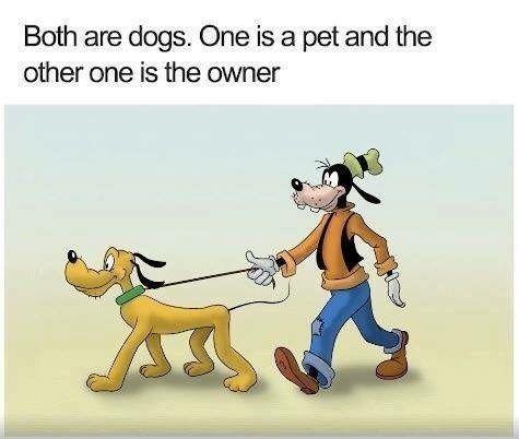 30 Times Cartoon Logic Made Us Rethink Our Childhoods Cartoon Logic Funny Cartoon Quotes Disney Funny