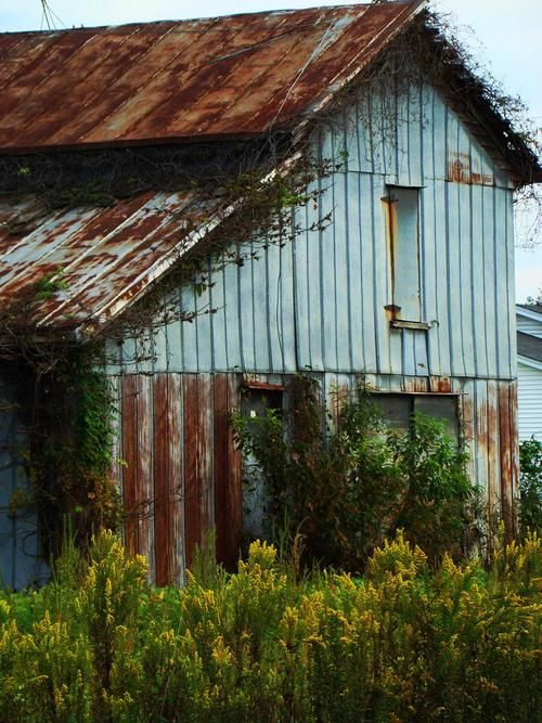 Best Turquoise Corrugated Metal And Metals On Pinterest 640 x 480