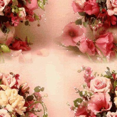 Mr, Flowers •.¸♥♥¸.• - Comunidad - Google+