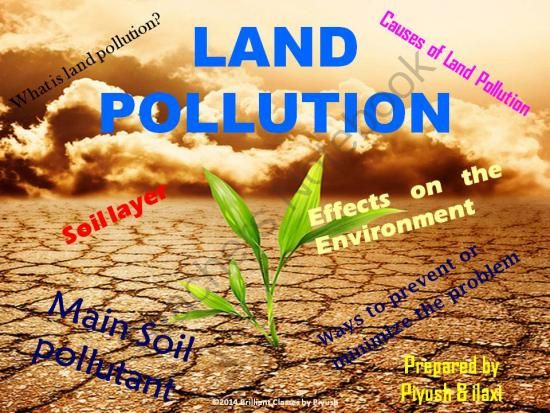 pollution and its effects on our environment The effects of industrial pollution are vast, causing water contamination, a release  of toxins into soil and the air, and it is  even when companies realize the  harmful effect they are having on the environment, they choose to.
