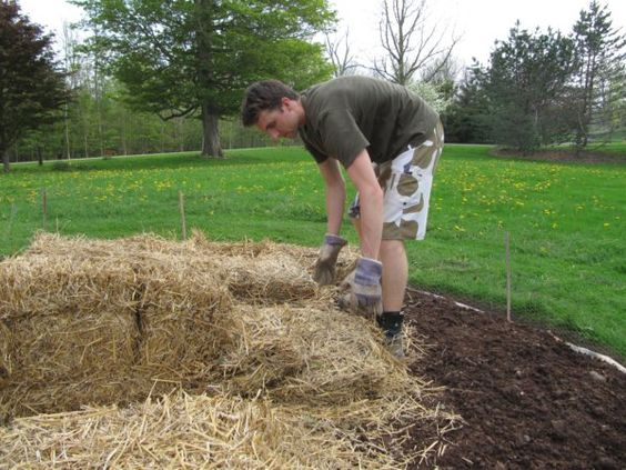 Lasagna method for creating a new garden bed. Great tutorial!