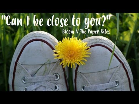 Can I Be Close To You Bloom The Paper Kites Lyrics The Paper Kites Bloom Paper