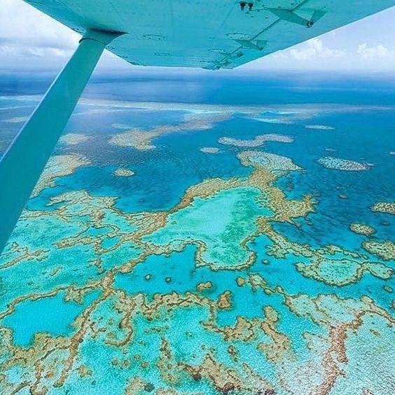 cerca de madeira para jardim em recife : cerca de madeira para jardim em recife:de corais e é considerado o maior recife de corais do mundo. O recife