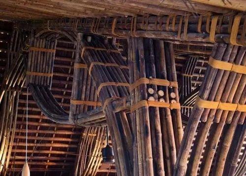 竹世界42.JPG - 竹子房子