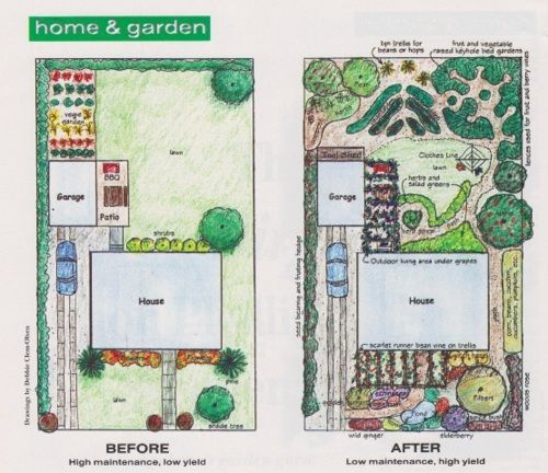 Gardens design and urban on pinterest for Permaculture garden designs